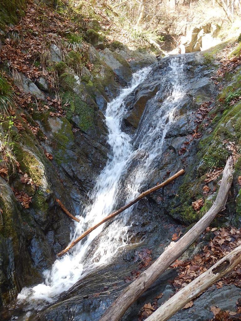 右俣最初の滝