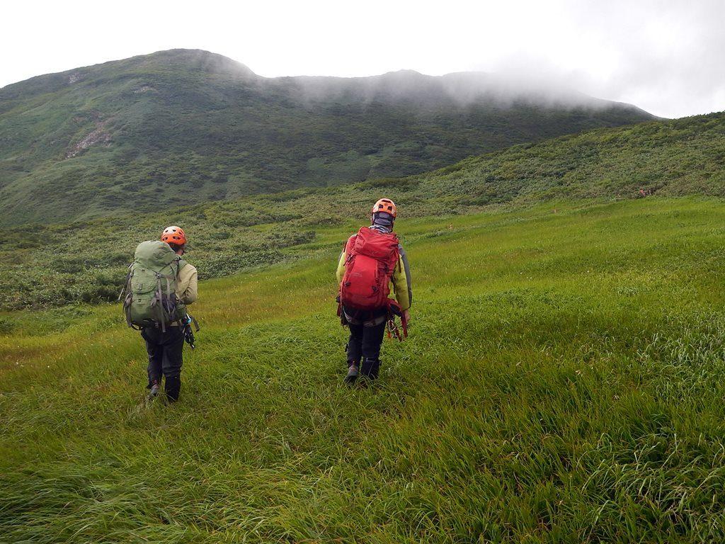 登山道手前の草原
