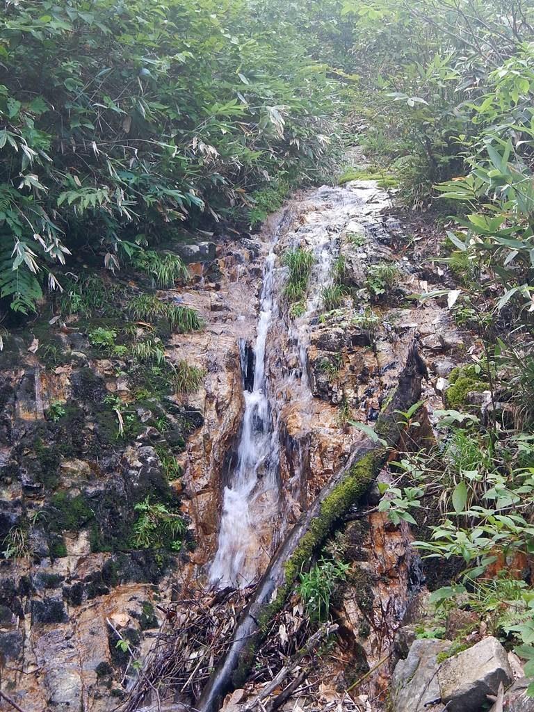 赤茶の滑る岩質