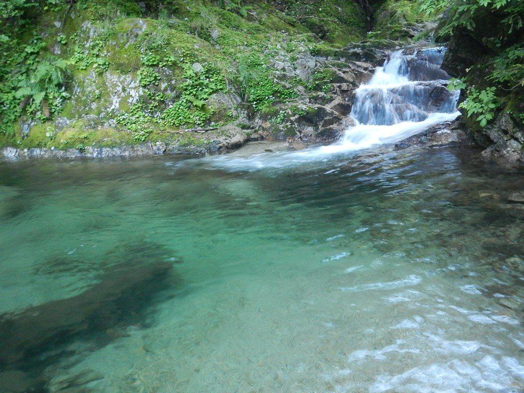 火打石沢上流部。水の色がきれいな釜