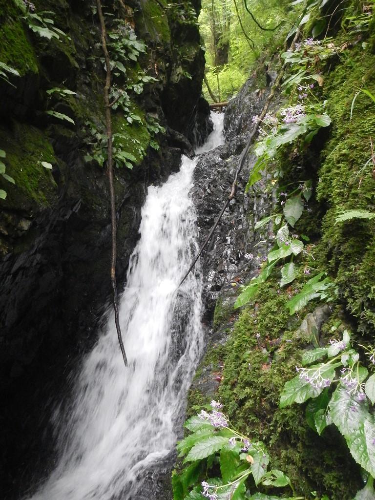 湯場ノ沢狭隘部の滝