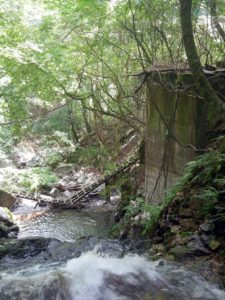壊れた登山道の木橋とコンクリート橋脚の遺構