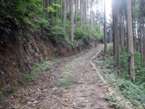 地図にない林道