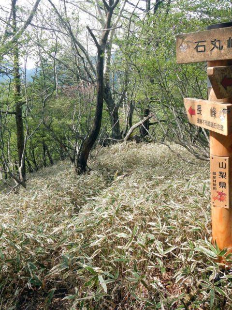 長峰登山道分岐